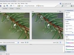 Photoshop Elements 4: Javítás az eredeti mellett