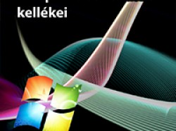 Windows 7: DirectX 11