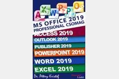 Microsoft Office 2019 Professional sorozat (angol verzió)